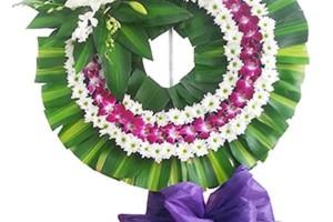 hoa tang 1