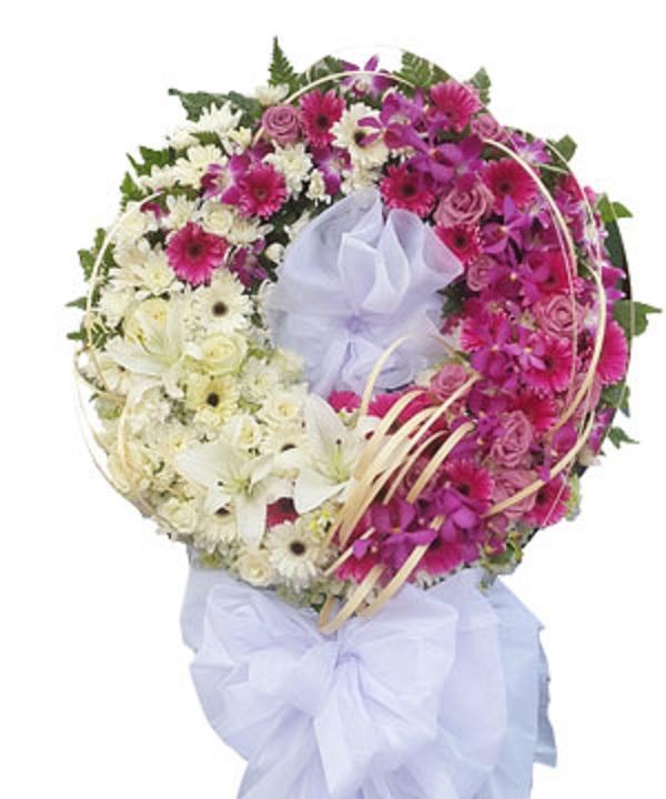 hoa tang 2